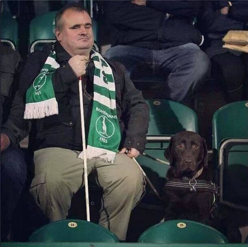 Bohemians blind fan